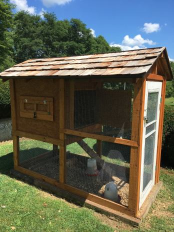 Hand-built chicken coop on the property of a home.
